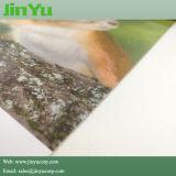 잉크 제트 인쇄할 수 있는 비 길쌈된 벽지