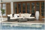Meubles réglés de jardin de sofa sectionnel extérieur réglé de meubles de sofa de rotin