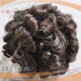 Toupee lockiges indisches Haar-der grauen Polyrand-Männer (PPG-l-01356)