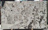 Splendor blanc / Brésil carreaux de granit blanc de haute qualité & dalles