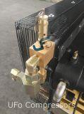 zweistufiger Kolben 30bar, der Luftverdichter für Flaschen-Formteil hin- und herbewegt