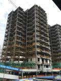 セメントのボードが付いているプレハブの高層鉄骨構造の木造家屋の構築
