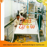 Инженерные пластмассовый скребок транспортера подъема машины для фруктов и овощей