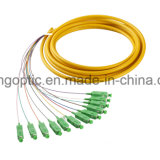 Sc/ПОСЛЕ ЗАМКА ЗАЖИГАНИЯ 12 Core Одномодовый оптоволоконный отвод