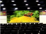 Het hoge LEIDENE van de Kleur van de Raad van de Reclame van de Helderheid P10 Volledige Scherm van de Vertoning