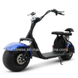 異なったカラーの高品質の電気モーターバイク