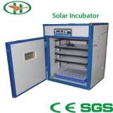 De fabriek voorzag ZonneBatterij voor ZonneIncubator van 36V&10A