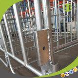 Stalle de gestation de porc de matériel de ferme de porc de qualité