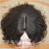 Volle Spitze-brasilianische Jungfrau-Haar-Spitze-Perücke (PPG-l-01645)