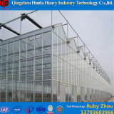 Feuille de PC/polycarbonate/Turnel/Glassgreenhouse pour horticulture