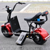 Novo Estilo Sport 2 rodas de bicicletas eléctricas Motociclo Eléctrico Ny-E85