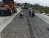 Pp.-zweiachsige Verstärkung Geogrid für Aufbau