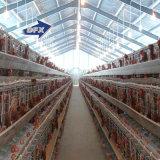 Edificio industrial de la granja avícola de la estructura de acero del bajo costo para la capa