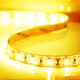 Hot vendeur 12V 60LED/M 5630 Strip Light