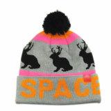 겨울 모자에 의하여 뜨개질을 하는 모자 자카드 직물 베레모 모자 POM POM 베레모 모자