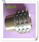 PPR 이음쇠를 위한 고품질 금관 악기 삽입