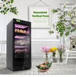Azienda agricola verticale urbana di Keisue per la piantatura delle verdure/fiore