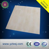 Панели потолка PVC доказательства пожара продукта высокого качества