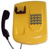 Atendimento de telefone da ajuda do telefone da linha de apoio a o cliente do telefone público de Equitment da segurança