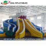 Riesiges Drache-Plättchen-aufblasbarer Wasser-Park mit Swimmingpool