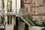 Escalera de madera de la pisada del pasamano de cristal recto al aire libre de la escalera