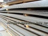 La qualità di perfezione del piatto dell'acciaio inossidabile di JIS G4304/JIS G4305 SUS316L ha prodotto da Tisco