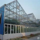 De Serre van Venlo van het Glas van de tuin met Hydroponic Systemen van de Serre