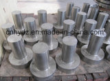 材料A182 F22のステンレス鋼のHubbedの熱い造られたフランジ