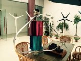 Nuevo estilo pequeño Maglev Vertical Wind Tubine Generador 12V 24V 100W
