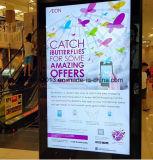 """スーパーマーケットのUSB/WiFi/3Gの32 """" 40 """" 43 """" 49 """" 55inch屋外LCDの表示"""