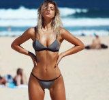 2017 Dame-reizvoller grauer Farben-Bikini