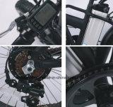20-дюймовый электрический на горных велосипедах 7 скорость диска электрический велосипед