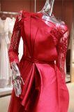 Lange Hülsen-Moslems plus Größen-Dubai-Satin-Abend-Kleid-Partei-Kleid Wgf142