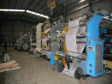 Máquina de impresión flexible de la serie del color YT 4