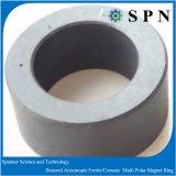 De ceramische Ring van de Magneet van de Motor van /Hard Ferriet Gesinterde
