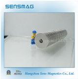 Magnete permanente del neodimio N35 con RoHS per il motore, generatore