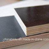 Encofrado encofrado de hormigón de la fábrica/marino/Construcción resistente al agua Film enfrenta el contrachapado para la construcción de uso