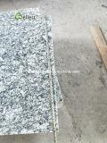 De artistieke Plechtige G418 Tegel van het Graniet van de Nevel Witte voor het Opruimen van de Muur en de Bekleding van de Vloer