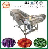 Automatische Handels-Ozon-Obst- und GemüseUnterlegscheibe