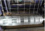가축 또는 양 Glassland 직류 전기를 통한 검술