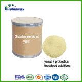 グルタチオンは健康食品の補足のためのイースト粉Gshを富ませた