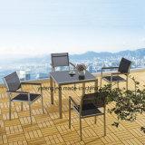Giardino caldo moderno di Aliminum di vendita di disegno semplice che pranza insieme Using dell'interno ed esterno (YT749)