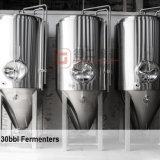 strumentazione di chiave in mano della fabbrica di birra della birra di alta Costo-Prestazione 15hl