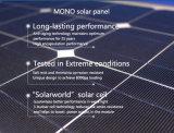 Todo en un solar 8W de luz de la calle al aire libre