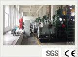 최신 판매 Biogas 발전기 Biogas 발전기 260kw