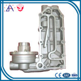 High Precision OEM Custom Zinc Die Casting (SYZ001)