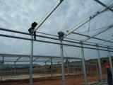 Huhn-landwirtschaftliche Maschine-Huhn-Schicht-Rahmen