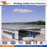 La volaille la plus tardive de structure métallique renferment fait en Chine