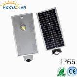 10W LED tutto in una lampada di via solare