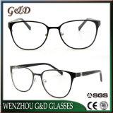 Het goede Metaal In het groot Eyewear van het Schouwspel van het Frame van het Ontwerp van de Manier Optische